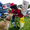 Penny, a Golden Retriever, greets Pricipal Dave Perrigo, in costume, during the Sizer School summer celebration and class car show on Saturday afternoon. SENTINEL & ENTERPRISE / Ashley Green