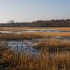 Hejresøen (Heron Lake)