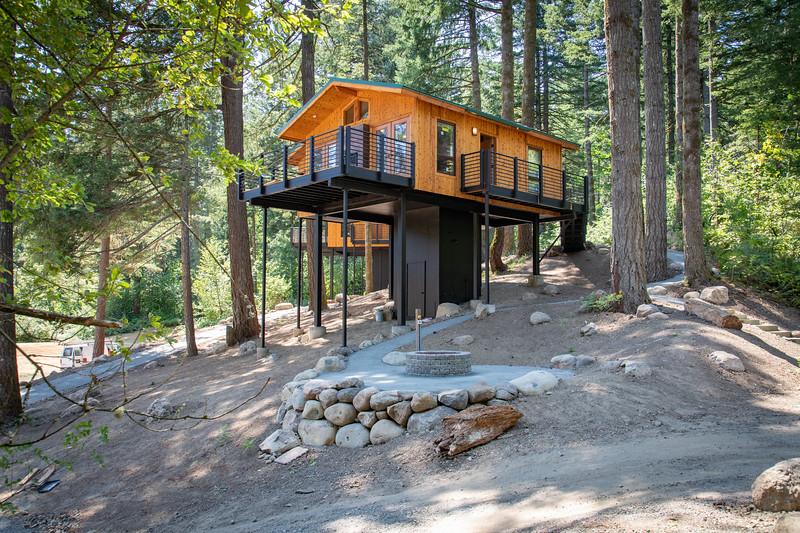 Treehouses_2020-1005
