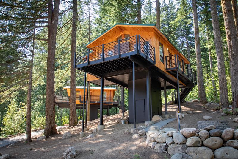 Treehouses_2020-1003