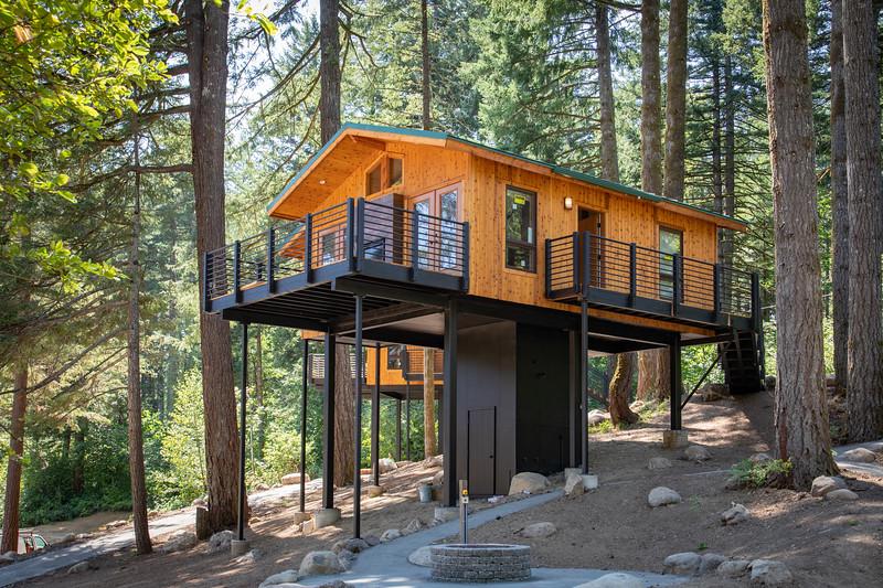 Treehouses_2020-1004