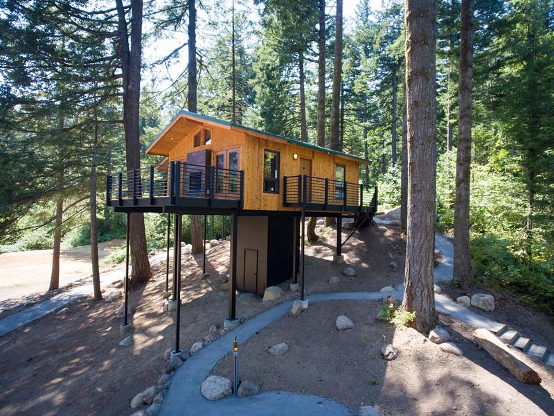 Treehouses_2020-1013