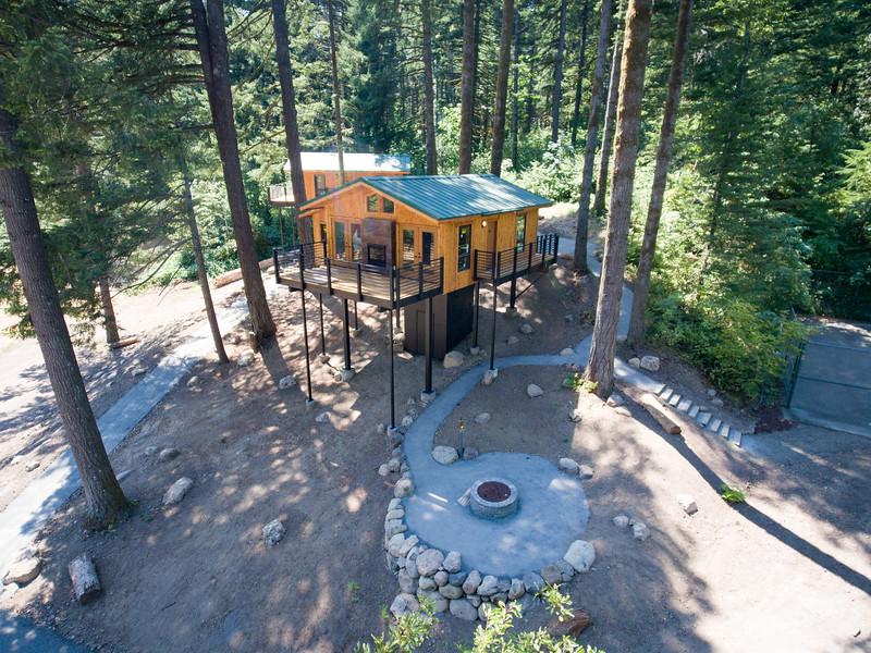 Treehouses_2020-1014