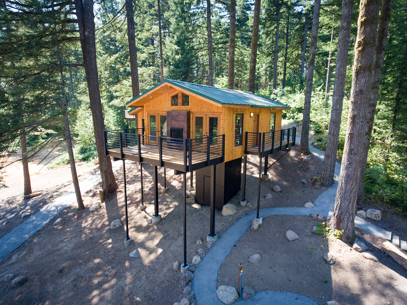 Treehouses_2020-1011