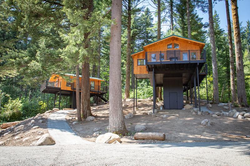 Treehouses_2020-1002