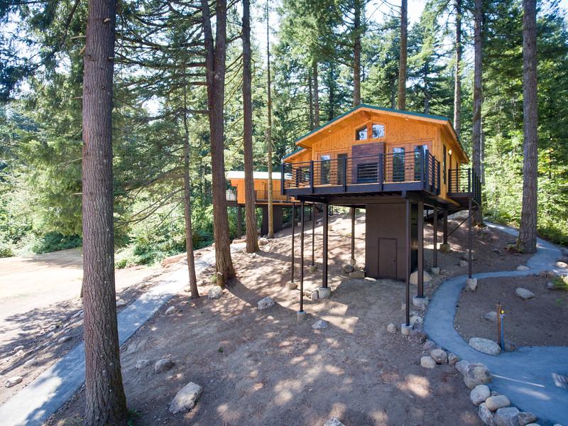 Treehouses_2020-1012
