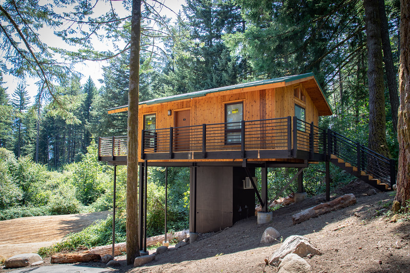 Treehouses_2020-1010