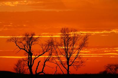 Springbrook Prairie Forest Preserve Naperville,Illinois
