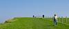 Pastviny nad útesmi pri Staithes
