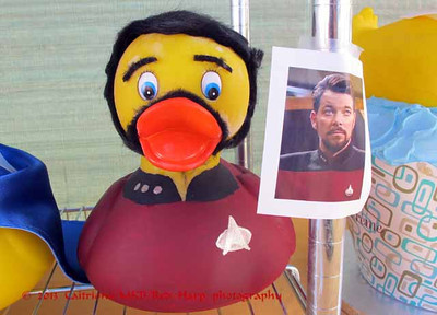 Renton River Days ducks Commander Riker! from Star Trek