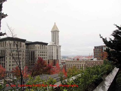 Smith Tower from 5th Ave patio of Columbia Center