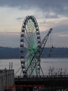 Great Wheel lit in Seahawks' green.  It's Super Bowl weekend and the Seahawks play Denver Broncos.