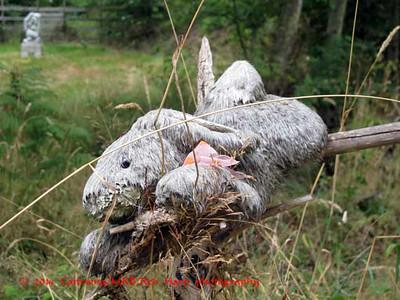 abandoned plush rabbit