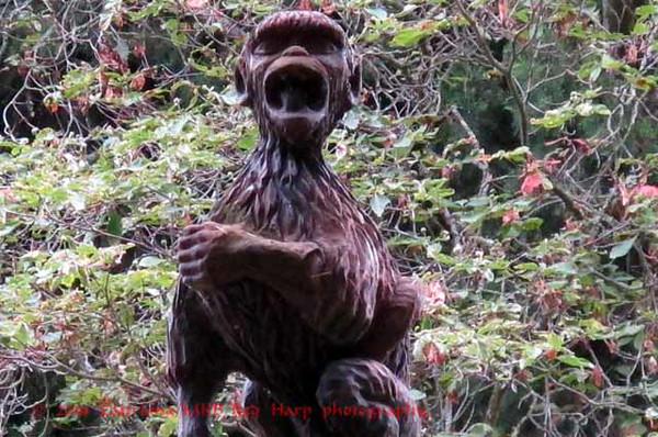 Crazy monkey sculpture guards the entrance
