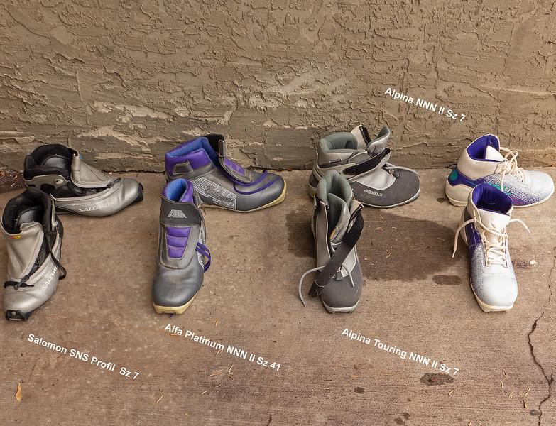Boots. NOTE BINDING COMPATIBILITY. <br /> Salomon SNS Profil size 7- good condition- $25<br /> Alfa Platinum Thinsulate  NNN II- size 41- good condition- $25<br /> Alpina Touring - SOLD<br /> Alpina NNN II size 7 - SOLD