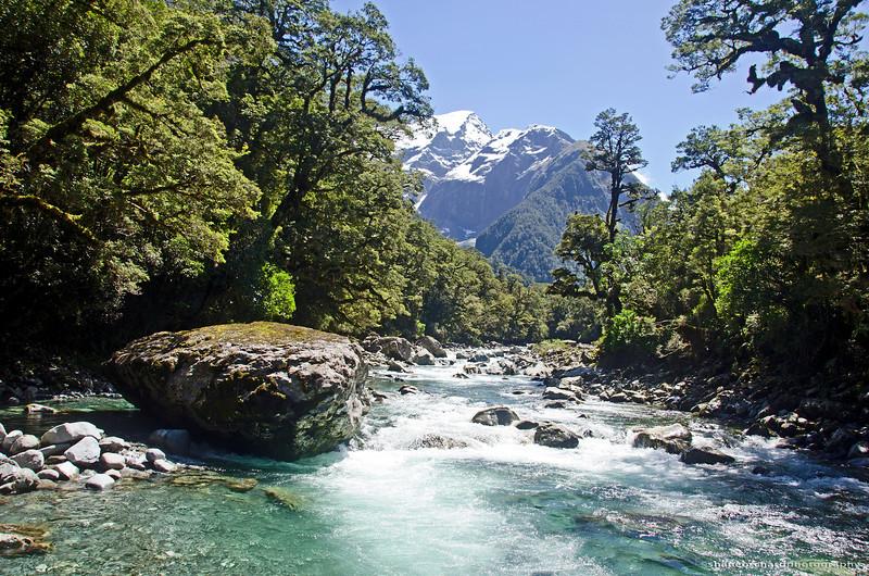 Harrison River<br /> Fiordland, NZ