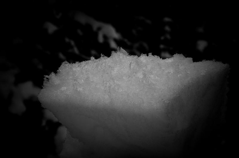 Mistaya_2012-104.jpg