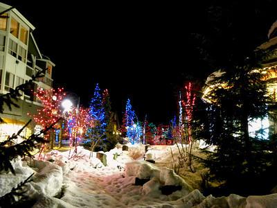 Ski Trips 2011