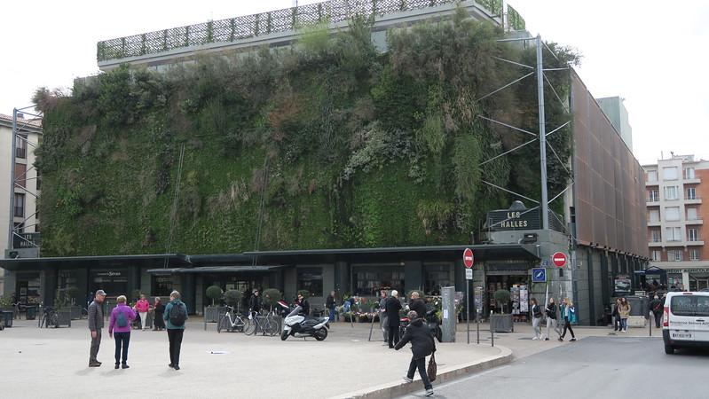 Vertical garden wall of the city market