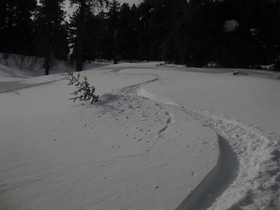 Deer Point Bowl_March 11 2010
