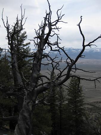 Supergully_Lost River Peak_April 25-26 2009