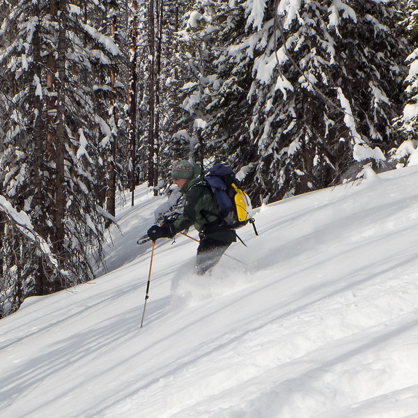 Andrew, enjoying the excellent powder skiing below treeline in Kananaskis, March 8.