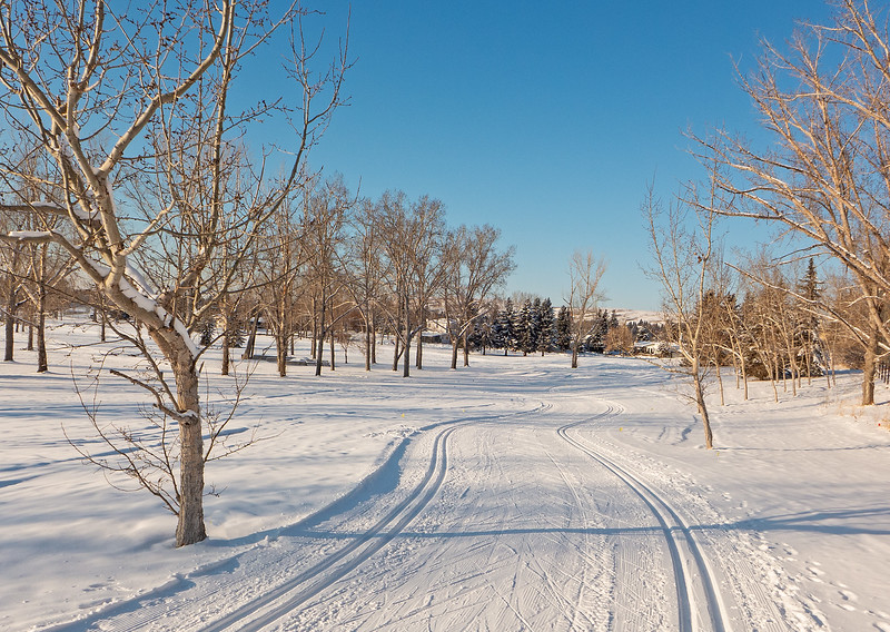Excellent ski conditions in -24, at Confederation on January 9.
