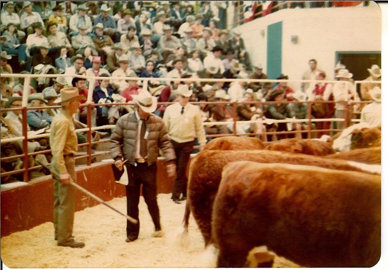 Show ring, Stock Show  January 1976<br /> Ed Keller