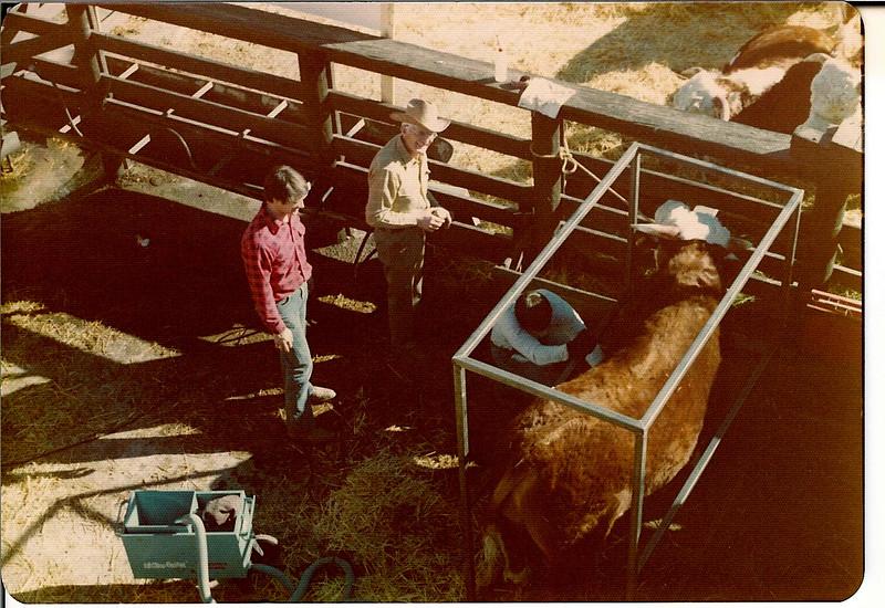 January 1976 <br /> washing