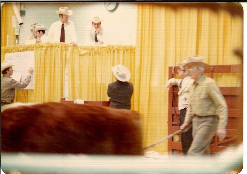 Show Ring, Stock show, January 1976<br /> Ed Keller