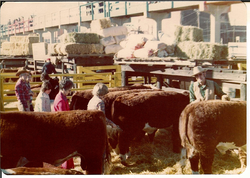 January 1976<br /> Loren, Linda, Rachael, Laura Lee, Bill Hilt