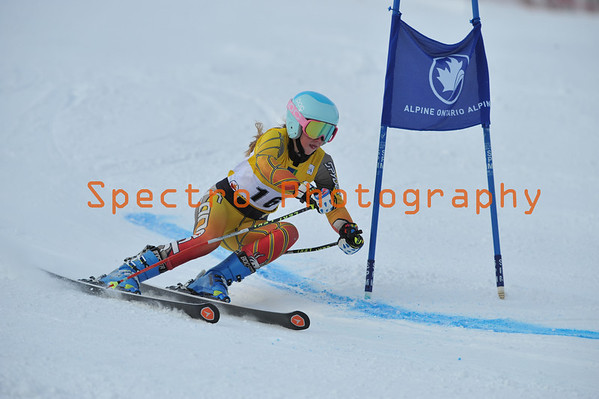 Ski and Snow Board Galleries