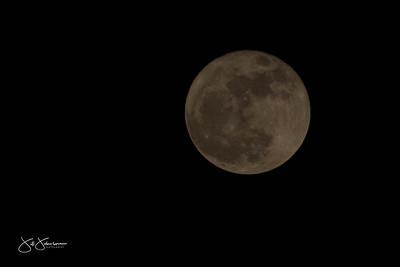 super_moon-9374