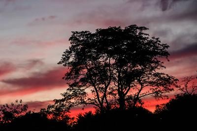 """""""Sunset"""" (digital photography) Karen Crouse"""