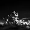 """Heavenly flower"" (photography) by Pavel Proskuryakov"
