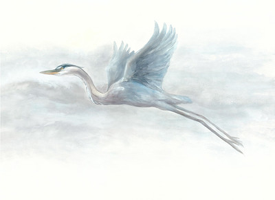 """""""Great Blue Flying"""" (watercolor) by Lisa McLaughlin"""