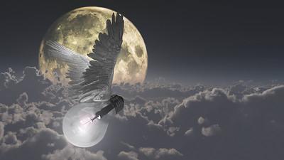 """""""Night Flight"""" (digital) by Bruce Rolff"""