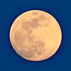 Colorado Moon in Spring