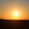 Sunrise 35