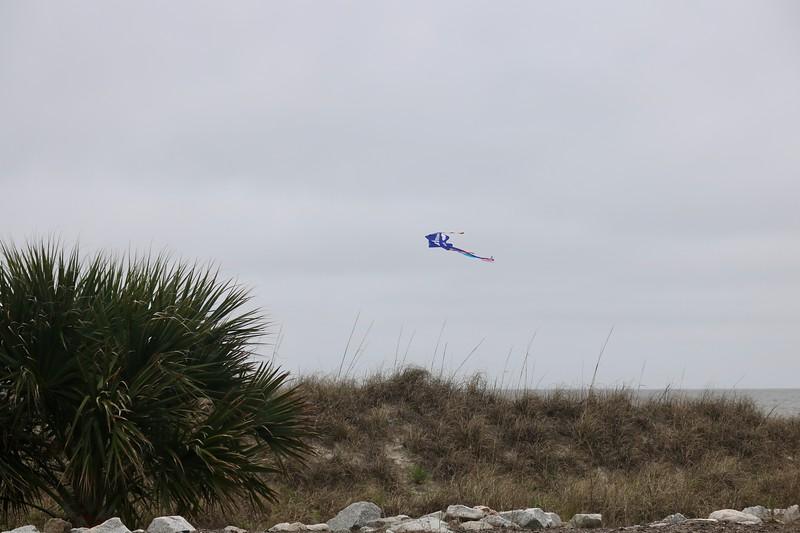 Kite over Coligny Beach