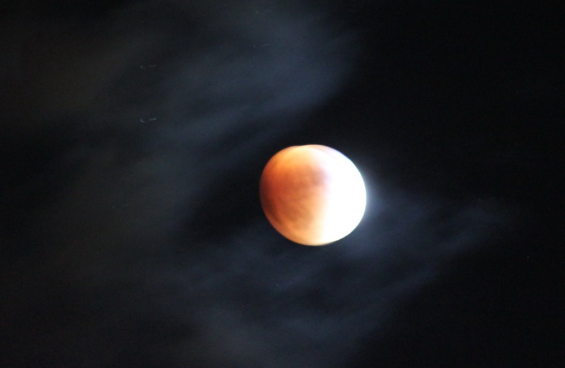 A Peachy Blood Moon