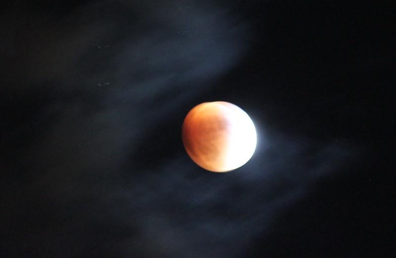 A Peachy Blood Moon