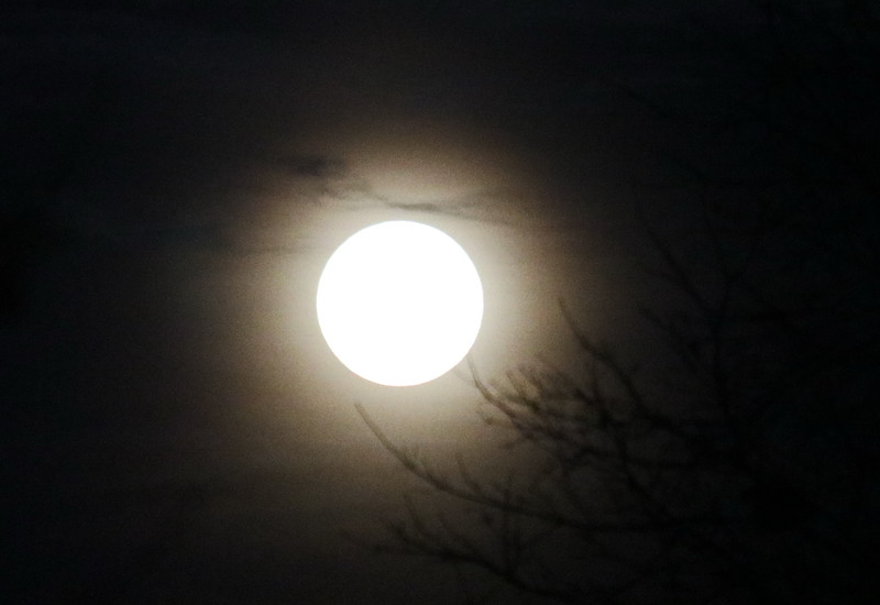 Supermoon 2019 Welcomes Spring