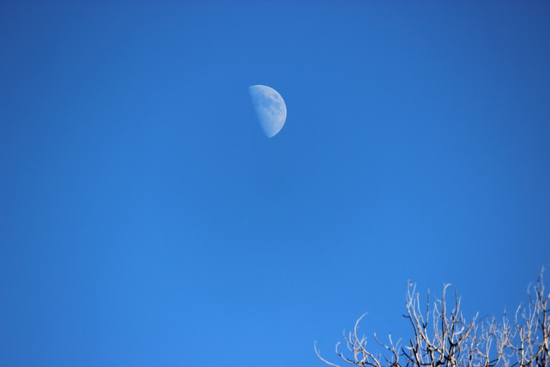 Moonrise in the Afternoon
