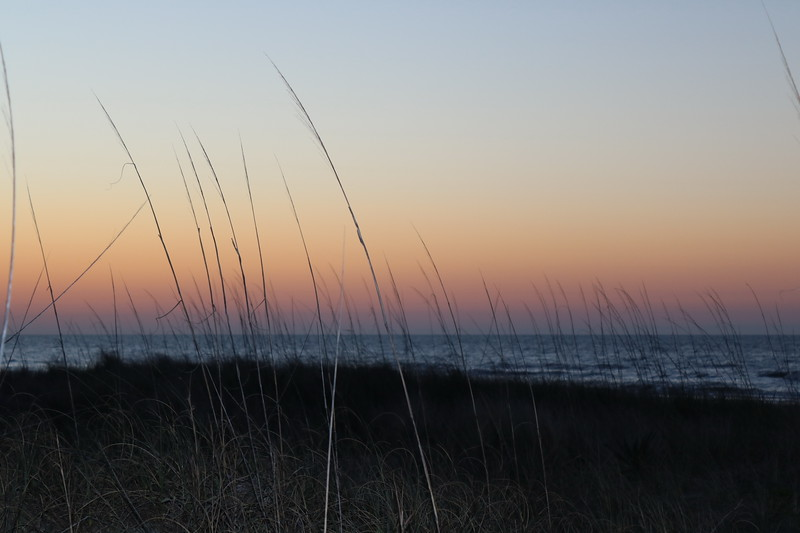 Dawn Viewed from the Dunes