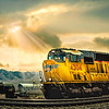 Sun-kissed Train