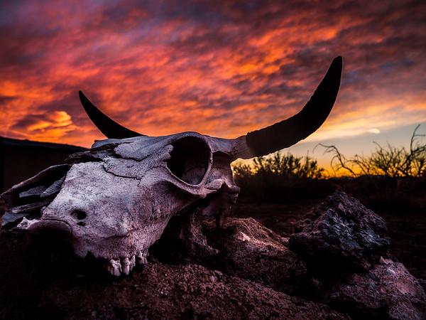 Bones and Fire