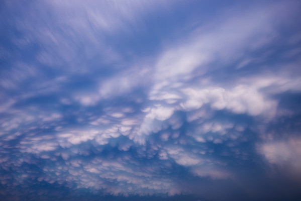 Dispersion of the Mammatus Clouds