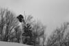 Skier, Stowe VT, Feb.2007