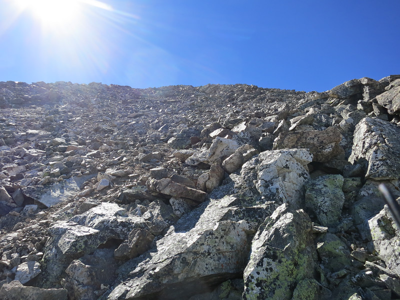Had to scramble this scree field to tag the summit